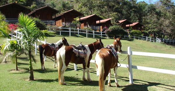 pousada cavalos 01