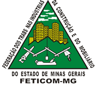 feticom mg logo 2