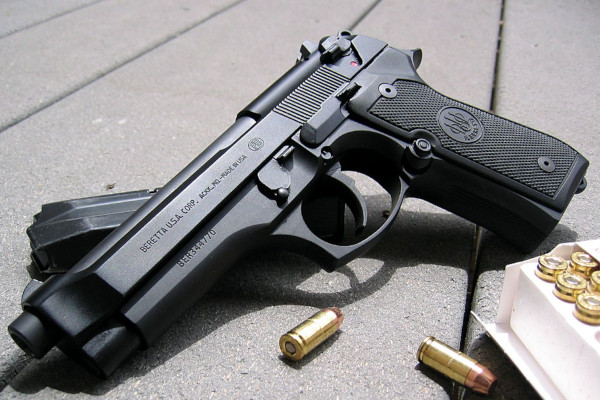 seguro arma de fogo